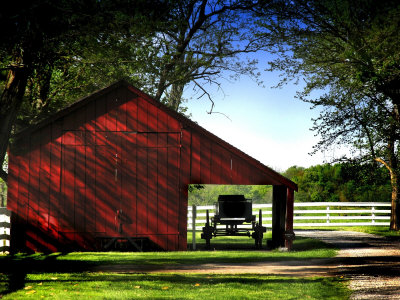 Buggy in the Red Barn Stretched Canvas Print