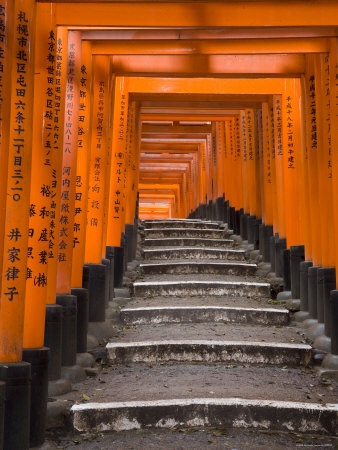 Torii Gates, Fushimi Inari Taisha Shrine, Kyoto, Honshu, Japan Stretched Canvas Print