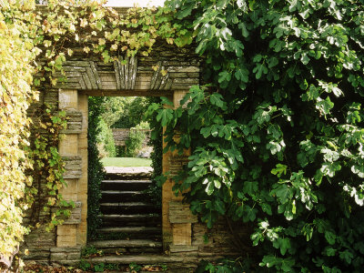 Arch Way in Ornamental Stone Wall with Fig & Vitis Stretched Canvas Print