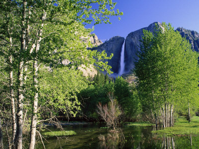 Yosemite Falls, Spring Time, CA Stretched Canvas Print