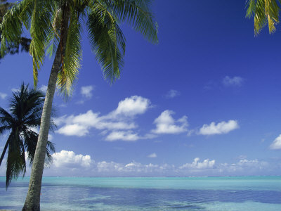 Bora Bora Island, French Polynesia So Pacific Stretched Canvas Print