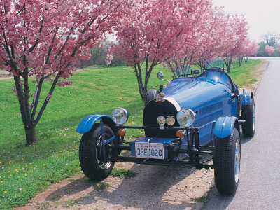 Bugatti Racecar and Cherry Blossoms Stretched Canvas Print