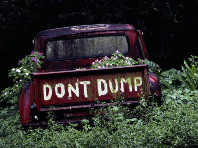 An Abandoned Vehicle Ironically Bears a Sign Warning against Dumping Stretched Canvas Print
