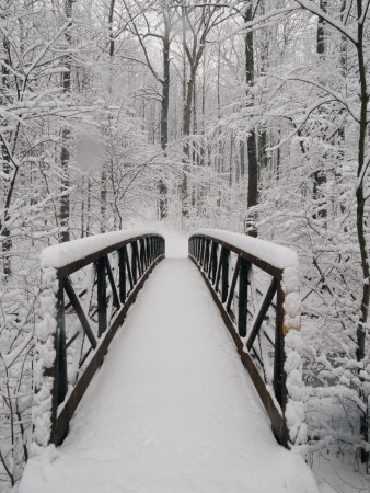 A View of a Snow-Covered Bridge in the Woods Stretched Canvas Print