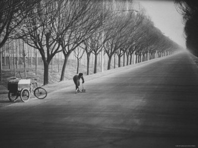 Chinese Street Cleaner Meticulously Sweeping This Tree Lined Road from the Peking Airport Stretched Canvas Print