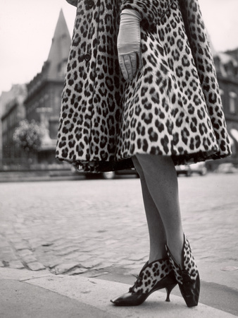 Laced Bootees of Leopard, to Match Coat, Designed by Dior Stretched Canvas Print