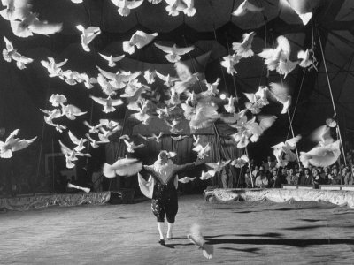 Famous Animal Trainer Vladimir Durov of the Moscow Circus Performing with His Birds Stretched Canvas Print