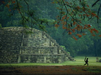 A Monkey Who Lives at the Site Walks Past a Mayan Ruin at Copan Stretched Canvas Print