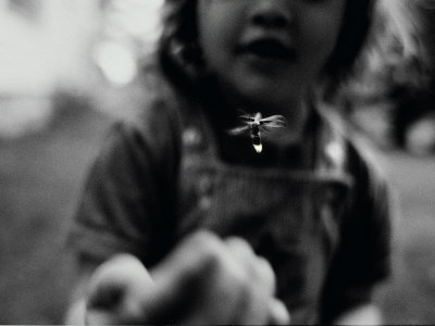 A Young Girl Reaches Out for a Firefly Stretched Canvas Print
