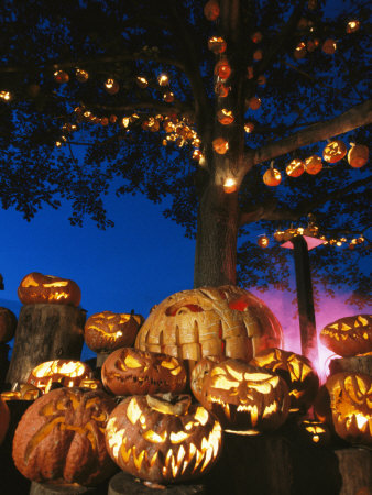 Grinning Lit Jack-O-Lanterns Surrounding and Filling a Tree Stretched Canvas Print