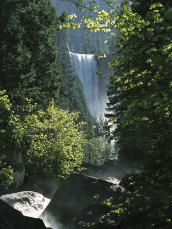 Vernal Fall Seen Through Lush Spring Foliage in Woodland Setting Stretched Canvas Print