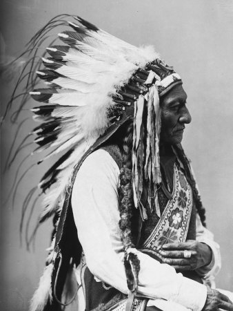 Portrait of an American Indian Chief Photographic Print at Art.