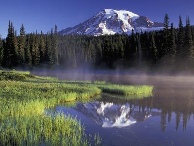 Early Morning on Reflection Lake, Mt. Rainier National Park, Washington, USA Stretched Canvas Print