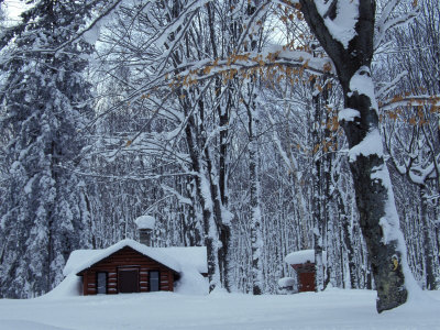 Log Cabin in Snowy Woods, Chippewa County, Michigan, USA Stretched Canvas Print