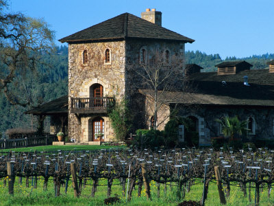 V Sattui Winery and Vineyard in St. Helena, Napa Valley Wine Country, California, USA Stretched Canvas Print