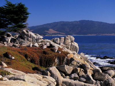 17-Mile Drive, Pescadero Point, Carmel, California, USA Stretched Canvas Print
