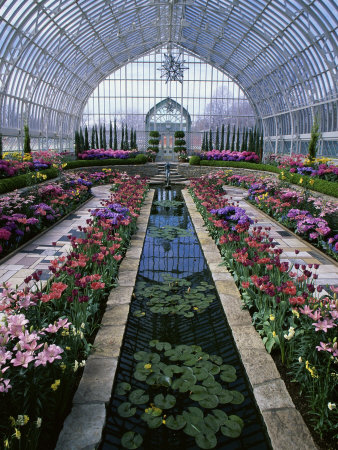 Como Park Conservatory, St. Paul, Minnesota, USA Stretched Canvas Print