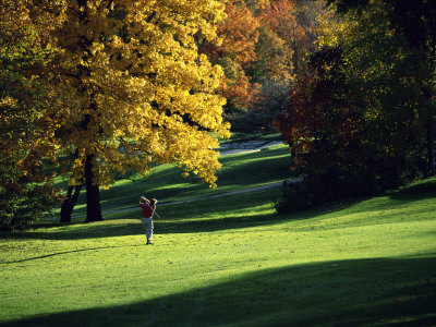 Autumn Golfing Stretched Canvas Print