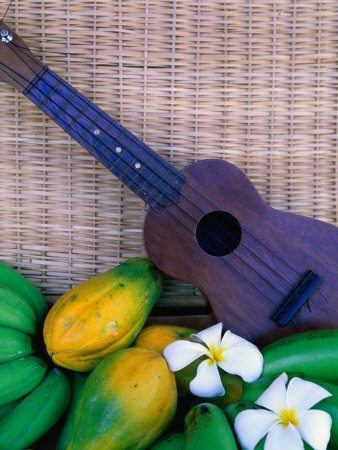 Green Bananas, Papayas, Plumeria and Ukulele, U.S.A. Stretched Canvas Print