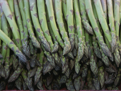 Asparagus at a Market in Provence Stretched Canvas Print