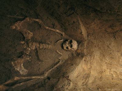 Skeletal Remains of Jamestown Colonist in Grave Unearthed by Archeologists Stretched Canvas Print