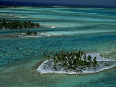 Sandbars with Palm Trees, Bora Bora Stretched Canvas Print