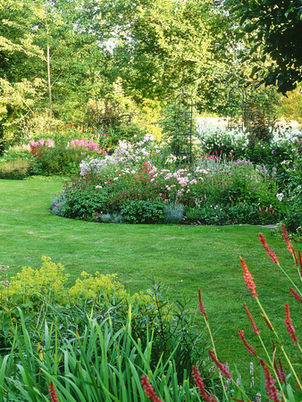 Island Beds Planted with Lychnis, Rosa, Caltha Palustris (Kingcups), Iris & Polygonium Stretched Canvas Print
