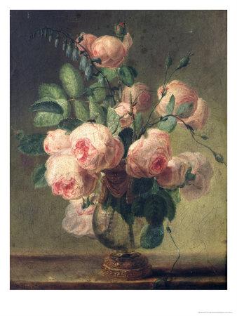 Пьер жозеф редуте художник и ботаник