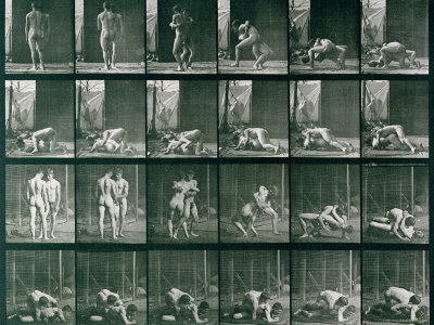 Two Men Wrestling, Plate 346 from Animal Locomotion, 1887 Stretched Canvas Print