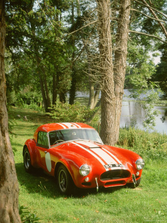 1964 AC Cobra Le Mans Stretched Canvas Print