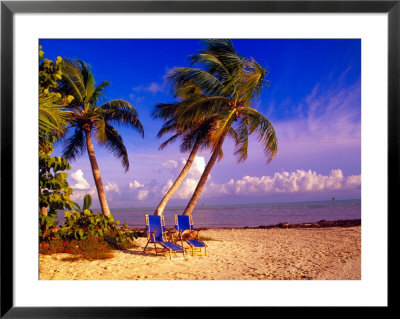 florida beaches with palm trees. Palm Trees and Beach Chairs,
