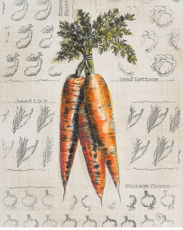 Carrots On Pinterest Vegetables Sketchbooks And