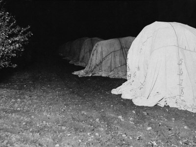California Citrus Heritage Recording Project, Tenting Citrus Trees at Night, Riverside County, 1930 Stretched Canvas Print