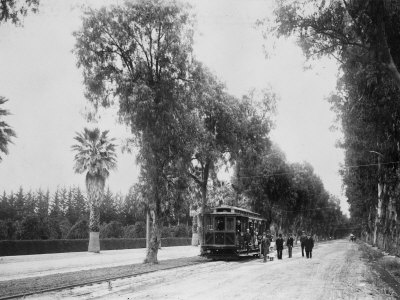 California Citrus Heritage Recording Project, Magnolia Avenue, Riverside County, 1920-1930 Stretched Canvas Print