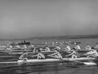 Washington Univ. Rowing Team Practicing on Lake Washington Stretched Canvas Print