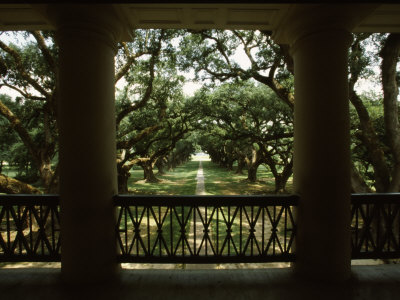Oak Trees in Front of a Mansion, Oak Alley Plantation, Vacherie, Louisiana, USA Stretched Canvas Print
