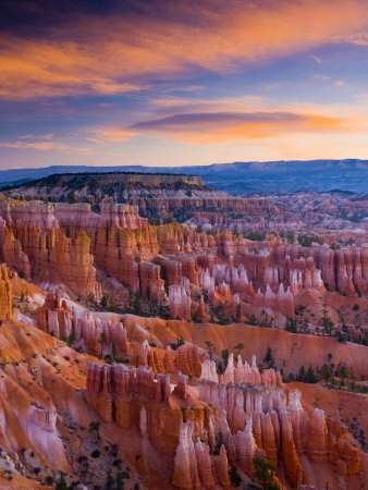 Utah, Bryce Canyon National Park, from Sunset Point, USA Stretched Canvas Print