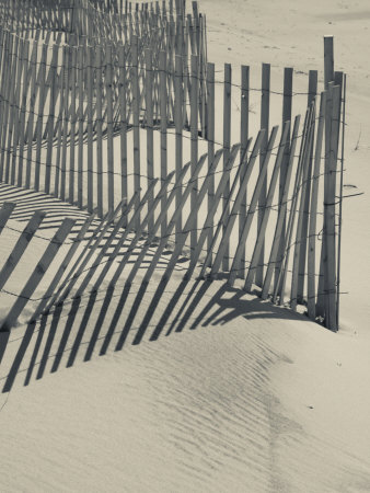 New York, Long Island, the Hamptons, Westhampton Beach, Beach Erosion Fence, USA Stretched Canvas Print