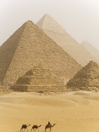 Camels Pass in Front of the Pyramids at Giza, Egypt Stretched Canvas Print