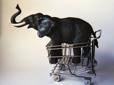 Profile Toy Elephant in Toy Supermarket Cart Stretched Canvas Print