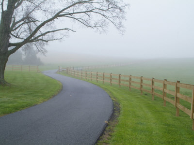 Misty Driveway Stretched Canvas Print