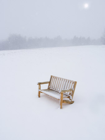 Wooden Bench in a Snow Storm Stretched Canvas Print