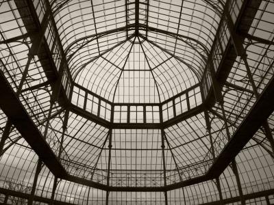 Palm House Following Restoration, the Botanic Gardens, Dublin, Ireland Stretched Canvas Print