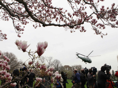 Marine One, with President Obama Aboard, Lifts Off from the South Lawn of the White House Stretched Canvas Print