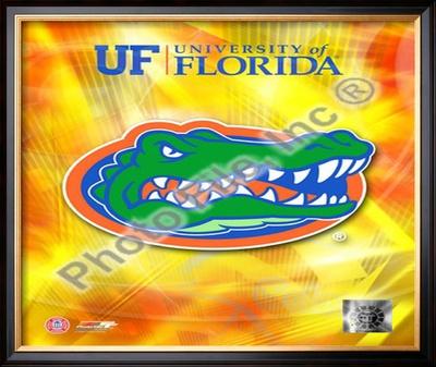university of florida gators. University of Florida Gators