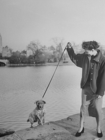 Lady with Her Dog in Central Park Stretched Canvas Print