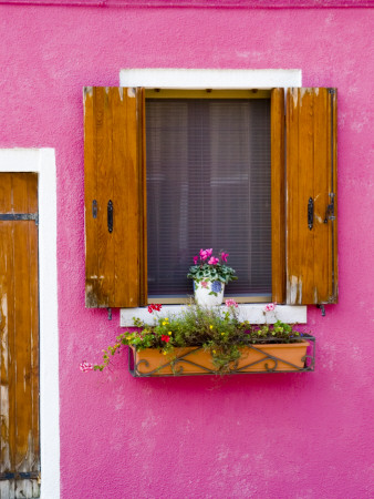 Pot Plant and Vividly Painted Facade, Burano Stretched Canvas Print