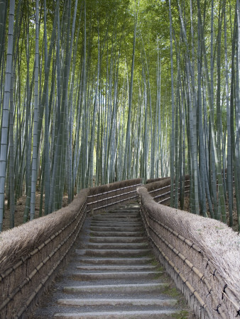 Stairway Through Bamboo Grove Above Adashino Nembutsu-Ji Temple Stretched Canvas Print