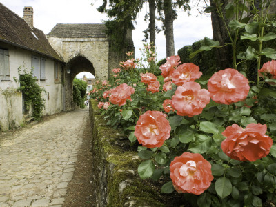 Roses and Archway on Rue Du Chateau in Gerberoy Stretched Canvas Print