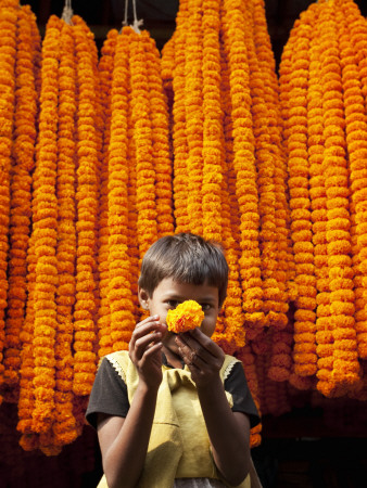 Little Girl Showing Off Marigold That She Stole from Beautiful Strings of Flowers Stretched Canvas Print